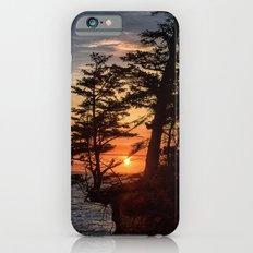 Sunset through the Trees Slim Case iPhone 6s