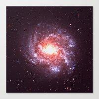 Star Attraction Canvas Print