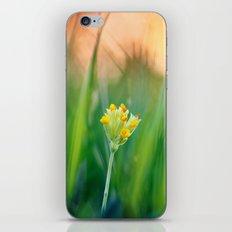 Morning beauty iPhone & iPod Skin