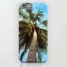 Palm Trees In The Sky iPhone 6 Slim Case