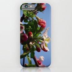 April flowers iPhone 6s Slim Case