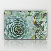 Succulents I Laptop & iPad Skin