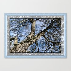 WINTER PEAR TREE Canvas Print