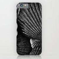 iPhone & iPod Case featuring Shells by SilverSatellite