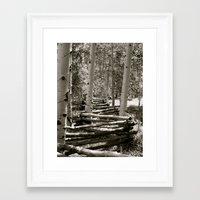 Fencing the Trees B/W Framed Art Print