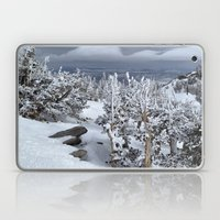Mt Rose Laptop & iPad Skin