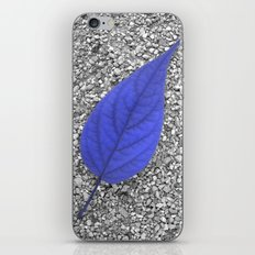 blue leaf IV iPhone & iPod Skin