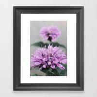 Porcupine Purple Framed Art Print