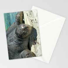 Turtle Ashore Stationery Cards