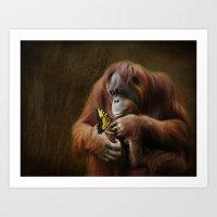 Orangutan and Butterfly Art Print