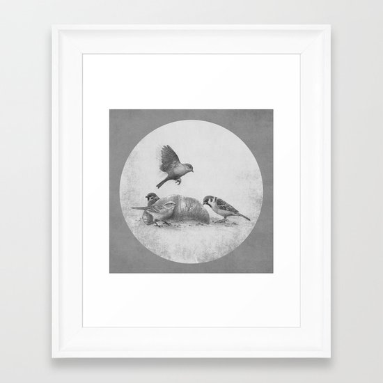 Parisian Sparrows  Framed Art Print