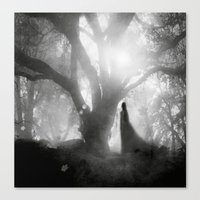 Black And White - Autumn… Canvas Print
