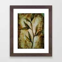 Old Vines Mixed Media Framed Art Print