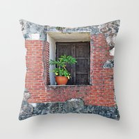 Plant on a Windowsill  Throw Pillow