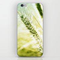 Splendor iPhone & iPod Skin