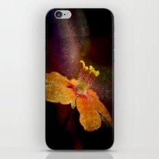 Dark Orange iPhone & iPod Skin