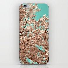 spring tree XVIII iPhone & iPod Skin
