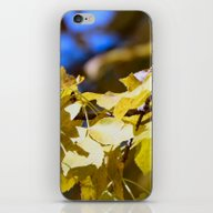 iPhone & iPod Skin featuring Fall Gold by Kealaphotography
