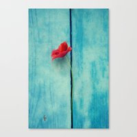 Papoula Canvas Print
