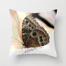 Bulls Eye Butterfly Throw Pillow