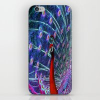 A Different Kind of Peacock iPhone & iPod Skin