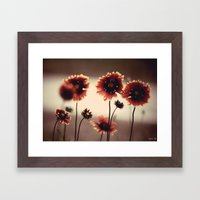 Daisy Chained Framed Art Print