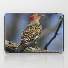 Northern Flicker iPad Case