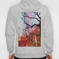 Color Blocked Hoody