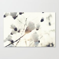 Four Canvas Print