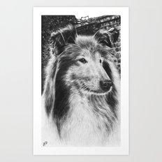 Rough Collie Dog Best Friend Lassie Art Print