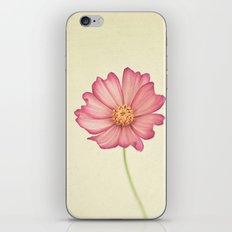Stay The Same iPhone & iPod Skin