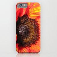 Blaze of Color iPhone 6 Slim Case