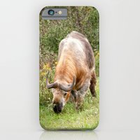 iPhone & iPod Case featuring The Endangered Takin by Captive Images Photography