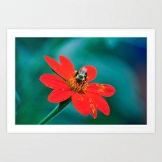 Botanical Garden No. 1 Art Print