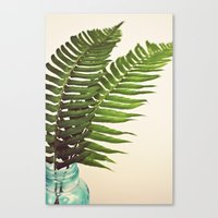 Canvas Print featuring Ferns II by Lawson Images