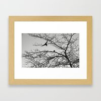 two crows Framed Art Print