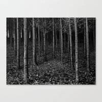 Armee of Trees Canvas Print