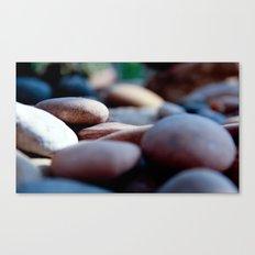 pebbles we carry/2 Canvas Print