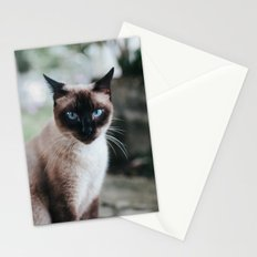 Blue-eyed Cat Stationery Cards