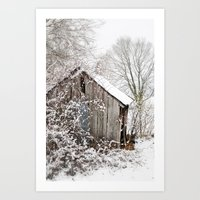 The Wooden Shed Art Print