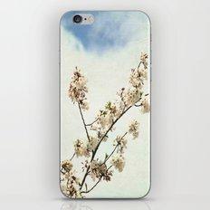 Stretching Cherry Blossom iPhone & iPod Skin