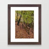 Steps Through Autumnal W… Framed Art Print