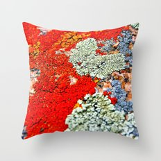 Likin' This Lichen Throw Pillow