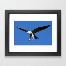 Kite in Flight Framed Art Print