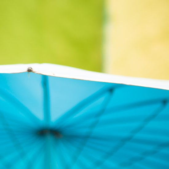 Summer Umbrella Art Print