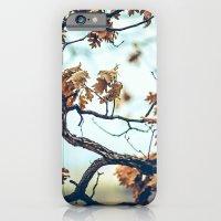 Autumn Branches iPhone 6 Slim Case