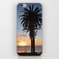 Southern California Sunset Palm Tree iPhone & iPod Skin
