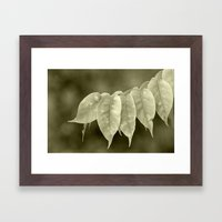 The Curtain Framed Art Print