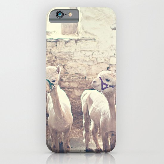 Young Alpacas  iPhone & iPod Case