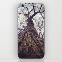 Tree Of Life iPhone & iPod Skin